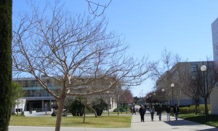 Financiación para tus estudios en la UA